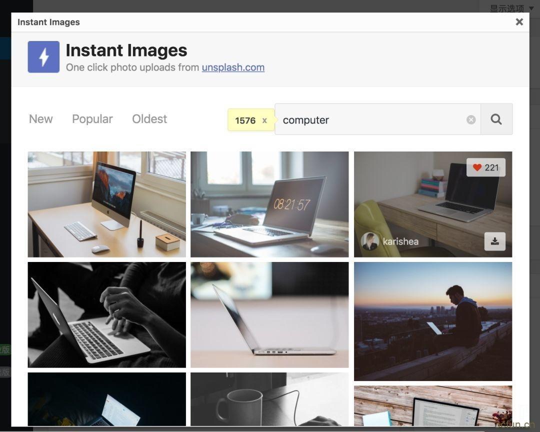 Instant Images|有了这个插件,再也不怕找不到优质的文章配图了